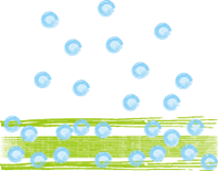 igusa-bubble.png